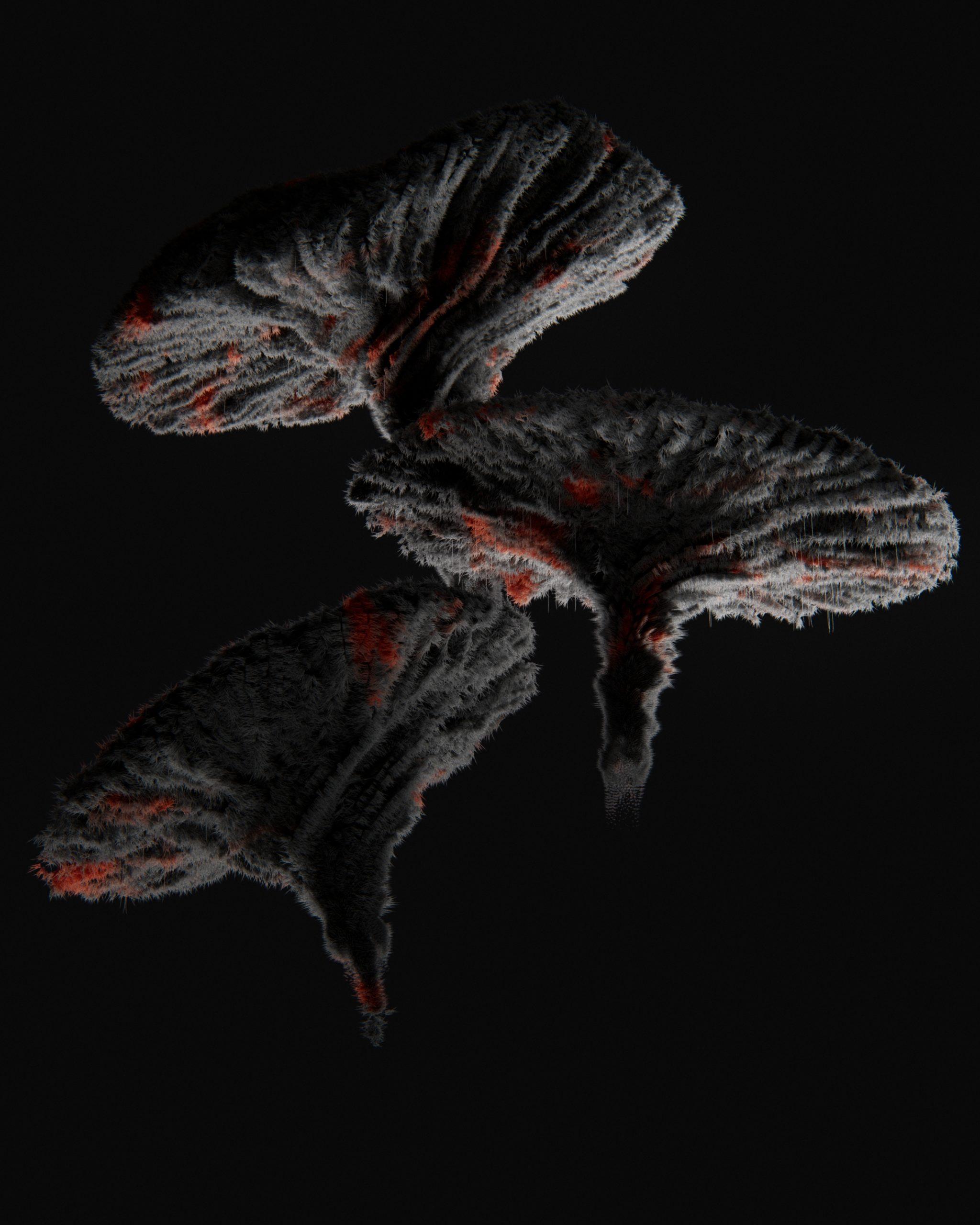 Mushroom01_v20201118C_1.3.1
